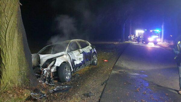 wypadek, pożar samochodu, udeżył w drzewo i zapalił się, pożar auta, spalone auto, autem w drzewo, pożar samochodu osobowego, prostozopolskiego.pl, lasowice wielkie, gronowice,