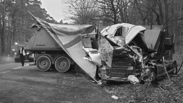 wypadek, wypadek śmiertelny, tir w drzewo, wypadek samochodu cięzarowego, zgnieciona kabina, strażacy uwalniali kierowcę, wypadek śmiertelny. wiadomości opolskie,