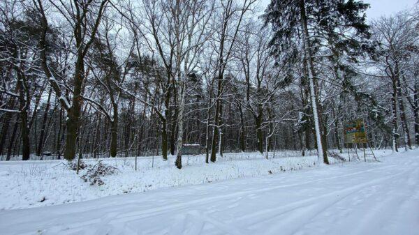 imgw, ostrzega, opady śniegu, mróz, będzie zimno, warunki pogodowe, pogoda opolskie, pogoda opole,