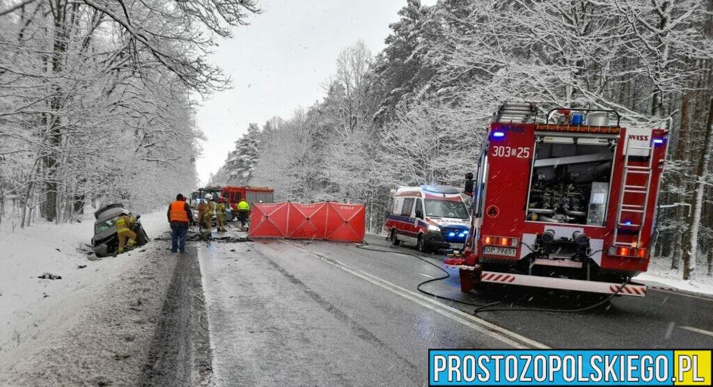 wypadek śmiertelny w lesie dąbrowskin na dk46