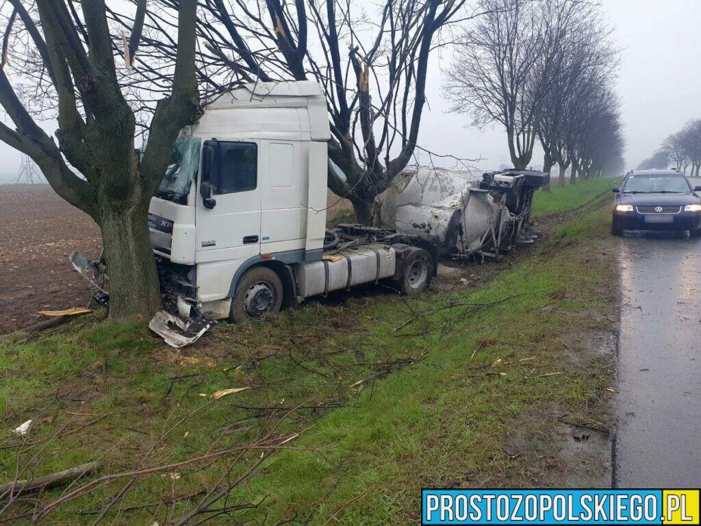 Wypadek na DK 94 pod Strzelcami Opolskimi. Ciężarówka z naczepą przewożąca cement uderzyła w drzewo.(Wideo)