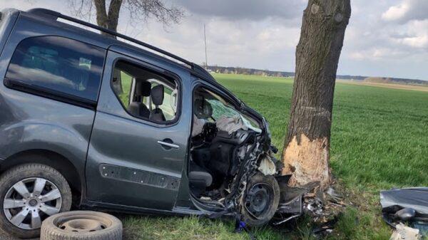 26-letni kierowca jadący citroenem z 2 pasażerami uderzył w drzewo. Na miejscu lądował LPR.(Zdjęcia)