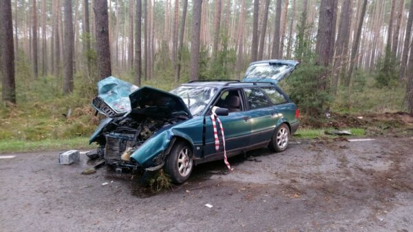 Audi uderzyło w drzewo w Polskiej Nowej Wsi pod Opolem. Policjanci ustalają kto kierował.