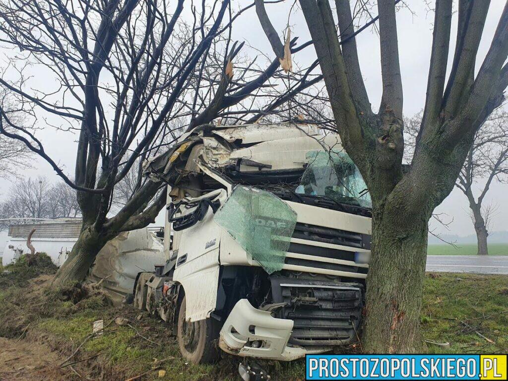 Wypadek na DK 94 pod Strzelcami Opolskimi. Ciężarówka z naczepą przewożąca cement uderzyła w drzewo.
