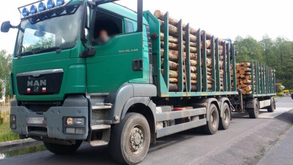 Za dużo drewna i wysoka grzywna dla przedsiębiorcy.