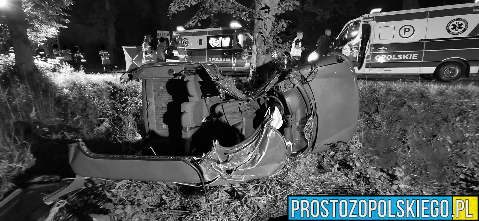 Tragiczny wypadek w gminie Pokój w powiece Namysłowskim. Jedna osoba nie żyje. Policjanci ustalają kto kierował autem.(Zdjęcia)