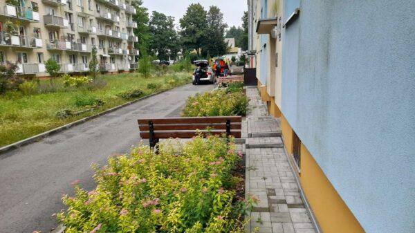 Kierujący busem potrącił pieszego na osiedlu Dambonia w Opolu.(Wideo)