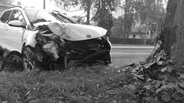 Kierująca autem wjechała w drzewo. Pasażerka zmarła w szpitalu.(Zdjęcia)