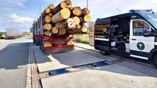 Ciężarówki z drewnem pod kontrolą WITD, według statystyk jest źle.(Zdjęcia)
