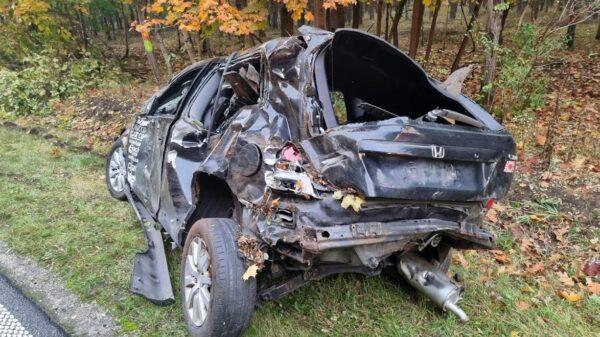 To cud, że kierujący przeżył!
