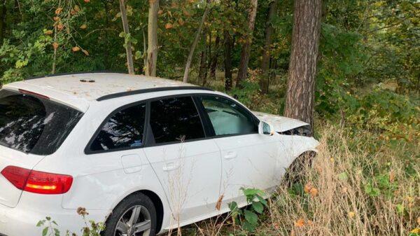 Policyjny pościg za piratem drogowy w powiecie Brzeskim.32-latek zakończył swoją ucieczkę na drzewie.
