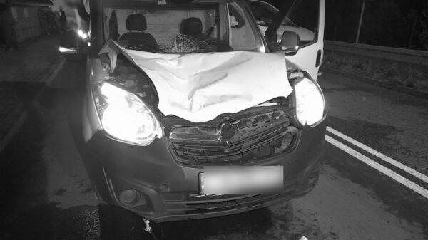Potrącenie pieszej na DW 401 w Kolnicy. Pomimo reanimacji 71-latka zmarła.(Zdjęcia)