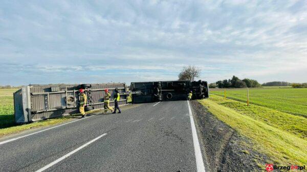 Podmuch wiatru zdmuchnął ciężarówkę na dk94 pomiędzy Pawłowem a Strzelnikami.